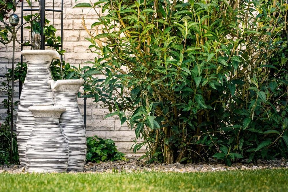 Brunnen neben Schmetterlingsflieder